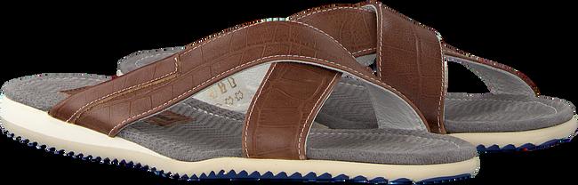 Cognac FLORIS VAN BOMMEL Slippers 20023 - large