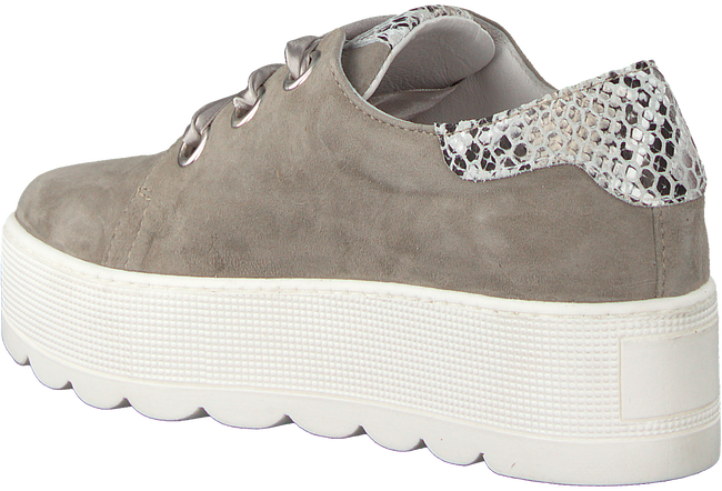 Taupe ROBERTO D'ANGELO Sneakers 605  - large