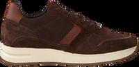 Cognac MAZZELTOV Sneakers 10445  - medium