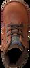 Cognac SHOESME Veterboots DE8W096 - small