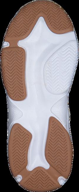 Witte VINGINO Lage sneakers DANNY  - large
