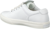 Witte TIMBERLAND Sneakers ADVENTURE 2.0 CUPSOLE ALPINE - small
