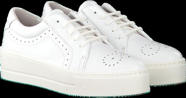 Witte ROBERTO D'ANGELO Sneakers ELY  - large