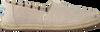 Beige TOMS Espadrilles CLASSIC ALPARGATA WM - small