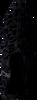 Zwarte PETER KAISER Enkellaarsjes 06291 - small