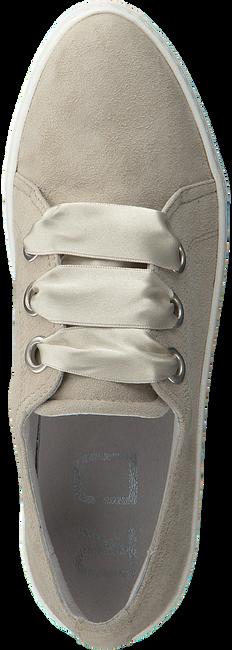 Beige ROBERTO D'ANGELO Sneakers LEEDS  - large