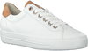 Witte PAUL GREEN Lage sneakers 4741  - small