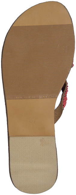 Roze HOT LAVA Slippers SM1749  - large