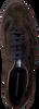 FLORIS VAN BOMMEL SNEAKERS 16216 - small