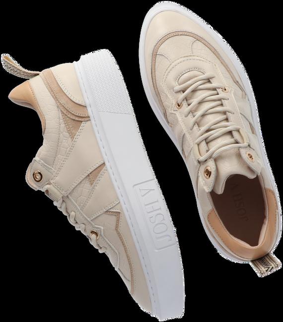 Beige JOSH V Lage sneakers WALKER  - large