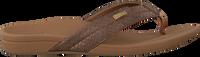 Bronzen REEF Slippers ORTHO SPRING  - medium