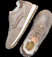 Taupe FRED DE LA BRETONIERE Sneakers 101010328  - medium
