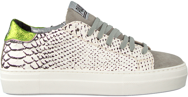 taupe P448 Sneakers E8THEA  - large