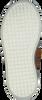 Cognac PINOCCHIO Veterboots P1555 - small