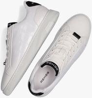 Witte REHAB Lage sneakers ZEKE CROCO  - medium