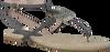 Grijze MALUO Sandalen 5056  - small