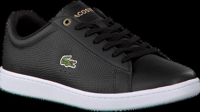 Zwarte LACOSTE Sneakers CARNABY EVO HEREN  - large