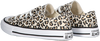 Beige CONVERSE Sneakers CHUCK TAYLOR ALL STAR OX KIDS  - small