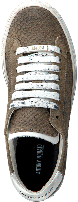 Taupe ANTONY MORATO Sneakers MKFW00114 - large