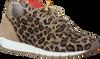 Beige VIA VAI Sneakers 5013098 - small