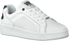 Witte VERTON Lage sneakers J5313 - small