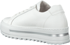 Witte GABOR Lage sneakers 498  - small