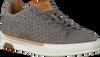 Grijze REHAB Sneakers THOMAS II LIZARD  - small