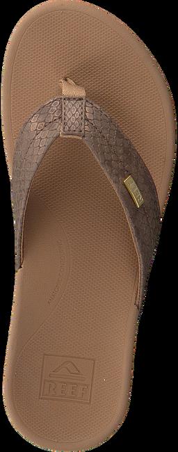 Bronzen REEF Slippers ORTHO SPRING  - large