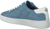 Blauwe MICHAEL KORS Sneakers IRVING LACE UP - small