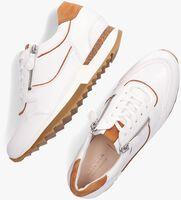 Witte HASSIA Lage sneakers MADRID  - medium