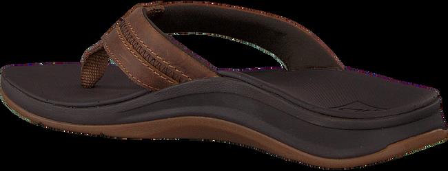 Bruine REEF Slippers ORTHO BOUNCE COAST MEN  - large