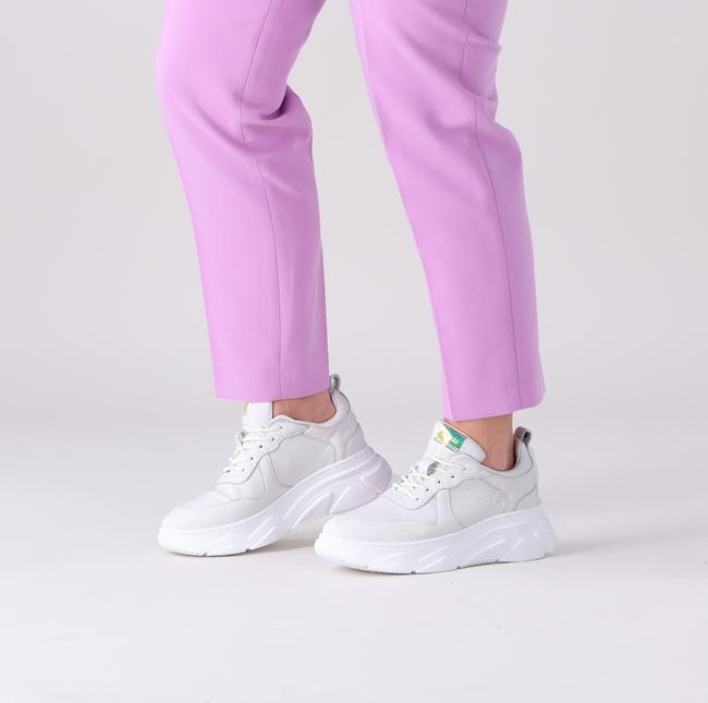Witte RED-RAG Lage sneakers 71192  - large