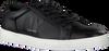 Zwarte CALVIN KLEIN Lage sneakers BOONE  - small