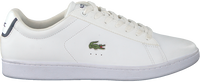 Witte LACOSTE Sneakers CARNABY EVO HEREN  - medium