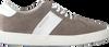 Grijze MAZZELTOV. Sneakers 3463  - small