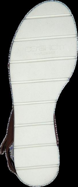 Bruine CA'SHOTT Sandalen 15091  - large