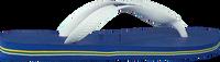 Blauwe HAVAIANAS Slippers BRASIL LOGO  - medium
