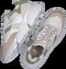 Groene COPENHAGEN STUDIOS Lage sneakers CPH555  - small
