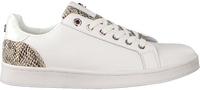 Witte MEXX Lage sneakers EEKE  - medium