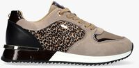 Taupe MEXX Lage sneakers FLEUR  - medium