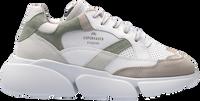 Groene COPENHAGEN STUDIOS Lage sneakers CPH555  - medium