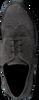 Grijze HUNDRED 100 Veterschoenen M681  - small