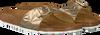 Gouden BIRKENSTOCK PAPILLIO Slippers MADRID SPECTRAL  - small