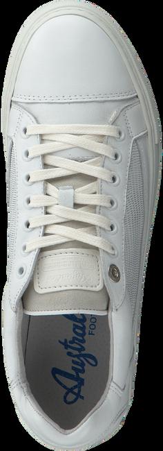Witte AUSTRALIAN Sneakers GIBSON - large