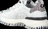 Witte FLORIS VAN BOMMEL Lage sneakers 16301  - small