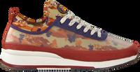 Multi SCOTCH & SODA Lage sneakers VIVEX  - medium