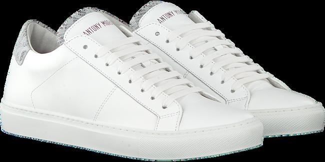 Witte ANTONY MORATO Sneakers MMFW00916 ANTONY MORATO - large