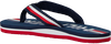 Blauwe TOMMY HILFIGER Teenslippers MAXI LETTERING PRINT FLIP FLOP  - small