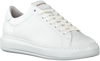 Witte BLACKSTONE Lage sneakers TW90  - small