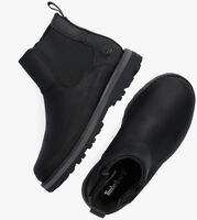 Zwarte TIMBERLAND Chelsea boots COURMA KID  - medium